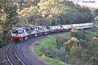 SCT006, SCT002, SCT012 and CSR003 on 5MP9 freighter at Fosters Curve on the 10th August 2012