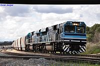 CBH002 and CBH003 on 4K92 loaded grain train at Forrestfield South on the 29th August 2013
